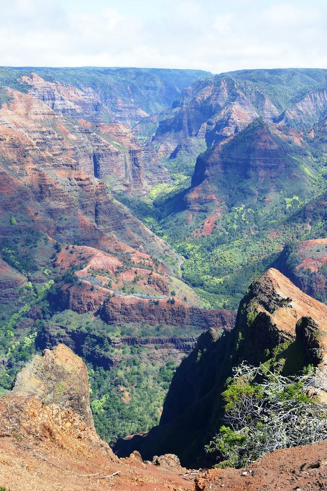 Waimea Canyon, Kauai, Hawaii, 1