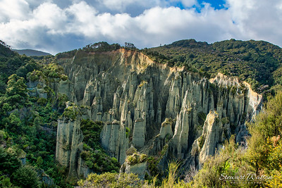 Putangiura Pinnacles  between Lake Ferry and Ngawi in the Wairarapa