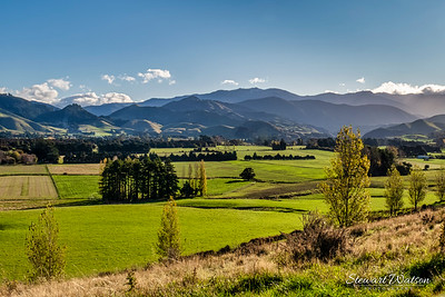 Looking down into the Upper Plain valley from Burnetts Road (just outside Masterton)