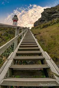 Cape Palliser lighthouse steps