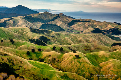 Rural heart land of the Wairarapa Coast