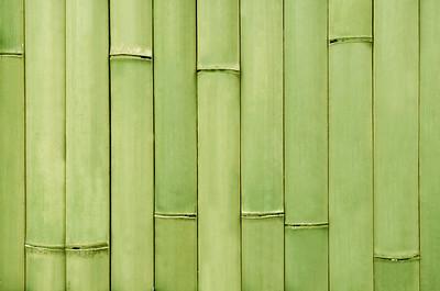 BAMBUS 42-46345886 Bambus