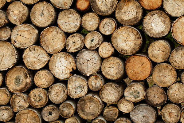 -- Image by © Aram Radomski/Berlintapete 14 Jun 2011, Alaska, USA --- Stacked firewood pattern, Alaska, USA --- Image by © Adam Jones/Visuals Unlimited/Corbis