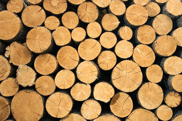 -- Image by © Aram Radomski/Berlintapete Stacked Pile of Wood --- Image by © 68/Ocean/Corbis