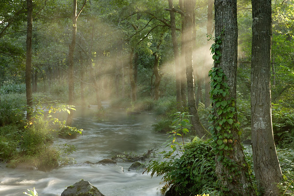 Sunbeams shining over stream in forest, morning --- Image by © 2/Ken Usami/Ocean/Corbis