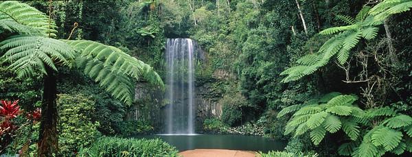 Millaa Millaa Waterfall, Australia, Queensland, Atherton Tableland --- Image by © Theo Allofs/Corbis