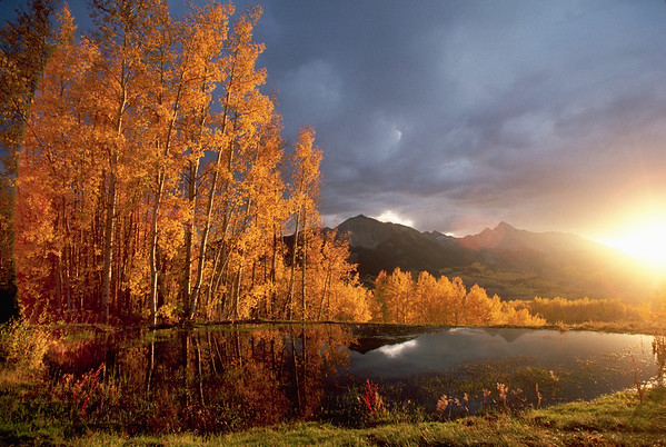 Telluride, Colorado, USA --- Colorado Pond Reflecting Autumn Leaves and Mountains --- Image by © Annie Griffiths Belt/Corbis