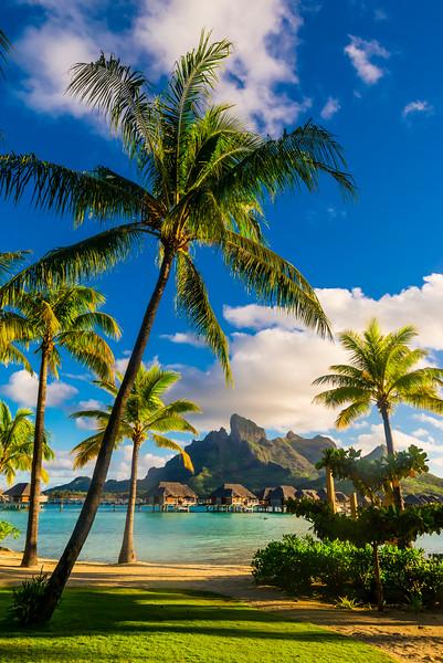 17 Jul 2014 --- Four Seasons Resort Bora Bora, Motu Tehotu, Bora Bora, Society Islands, French Polynesia. --- Image by © Blaine Harrington III/Corbis