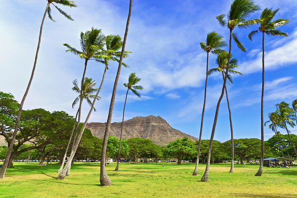 Diamond Head in Kapiolani regional park; Honolulu, Oahu, Hawaii, United States of America --- Image by © James Crawford/Design Pics/Corbis