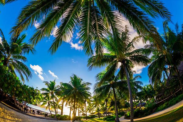 17 Jul 2014, Bora Bora, French Polynesia --- Four Seasons Resort Bora Bora, Motu Tehotu, Bora Bora, Society Islands, French Polynesia. --- Image by © Blaine Harrington III/Corbis