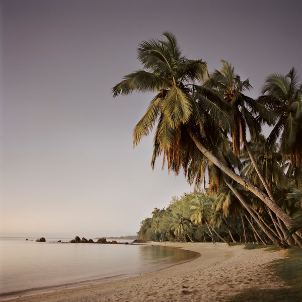 14 Feb 2011 --- tropical island --- Image by © Bernd Vogel/Corbis