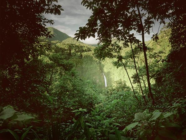 Costa Rica --- Waterfall seen through jungle canopy in Costa Rica --- Image by © Darran Rees/Corbis