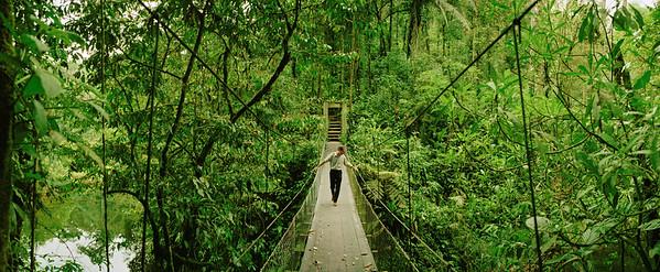 03 Nov 1997, Braulio Carrillo National Park, Costa Rica --- Braulio Carrillo National Park --- Image by © Macduff Everton/Corbis