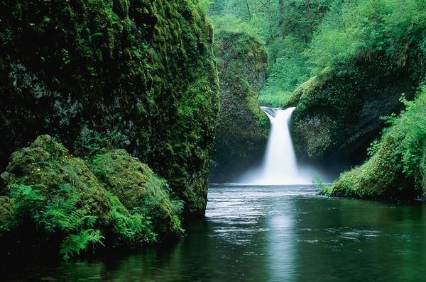 Mount Hood National Forest, Oregon, USA --- Punchbowl Falls, Eagle Creek --- Image by © Kevin Schafer/Corbis