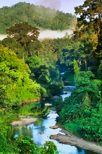 Danum Valley Conservation Area, Malaysia --- River in lowland rainforest of Danum Valley, Borneo. --- Image by © Frans Lanting/Corbis