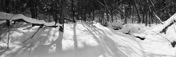 Forest and snow landscape --- Image by © 145/Gaetan Charbonneau/Ocean/Corbis