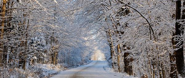 Canada --- Tree Lined Road In Winter; East Hill Quebec Canada --- Image by © David Chapman/Design Pics/Design Pics/Corbis