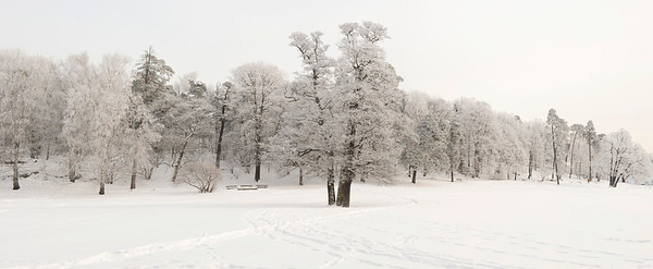 2010 --- Winter landscape, Sweden, Europe --- Image by © Lars Hallstrom/imageBROKER/Corbis