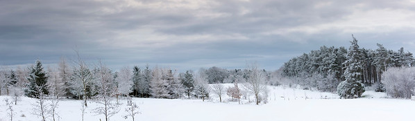 Northumberland, England, UK --- A winter landscape --- Image by © John Short/Design Pics/Corbis