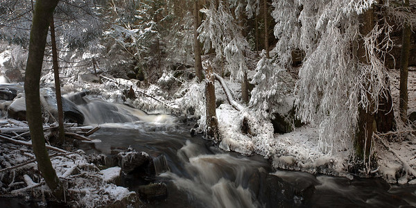 Sweden --- Scenic shot of creek flowing between snow covered trees in the forest --- Image by © Anders Nils Nilsson/Matton Collection/Corbis