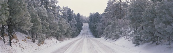 This is Route 64 after it has snowed. There is snow on the trees and several cars have driven over the snowy road as you can see where they have driven. --- Image by © 2/VisionsofAmerica/Joe Sohm/Ocean/Corbis