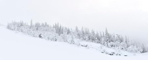 23 Jan 2013, Sweden --- Snowy landscape --- Image by © Björn Andrén/Matton Collection/Corbis