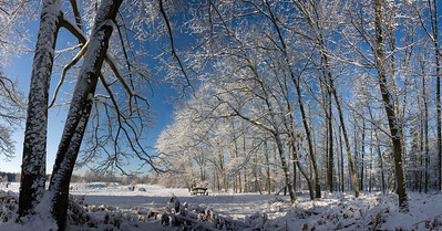 11069x5792, winter, snow, forest, trees, white, blue sky