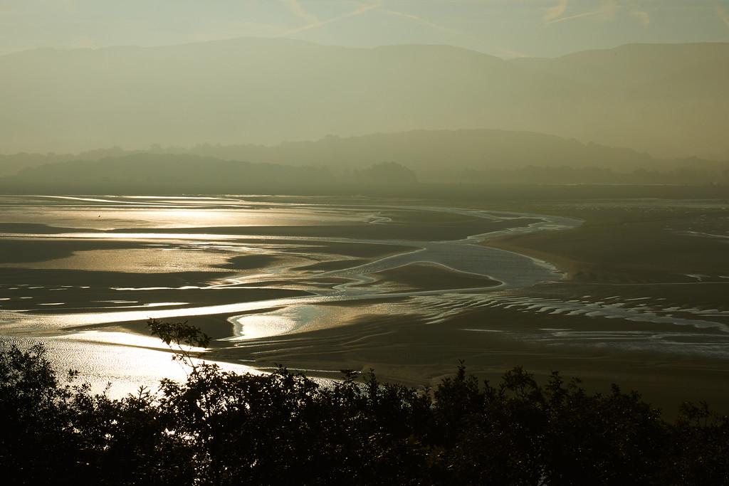 Dyfi estuary, tide out