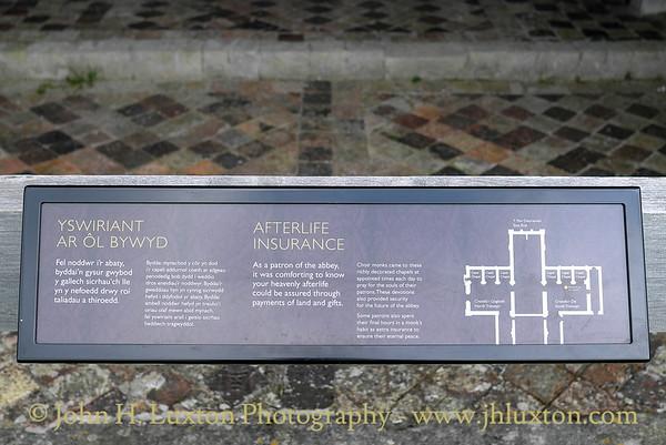 Strata Florida Abbey, Ceredigion - August 08, 2013