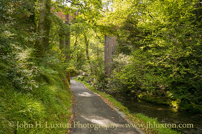 Dolgoch Falls and Ravine, Gwynedd, Wales - September 26, 2020
