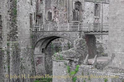 Raglan Castle - Castell Rhaglan - Monmouthshire - June 01, 2016