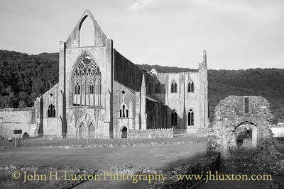 Tintern Abbey - west elevation on a sunny evening.