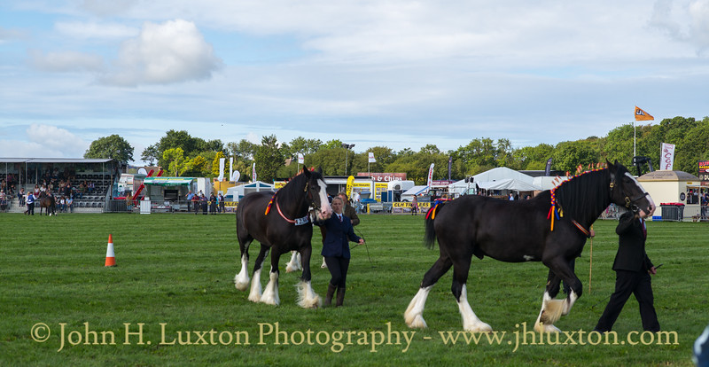 Pembrokeshire County Show - August 13, 2019