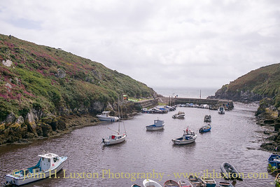 Porthclais Harbour, St David's - August 17, 2017
