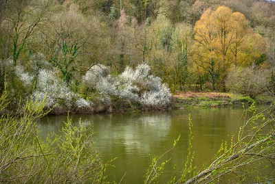 River Wye near Brockweir, Monmouthshire
