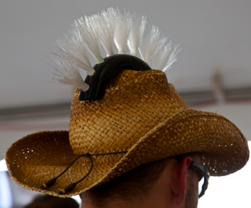 Ceiling Fan duster?
