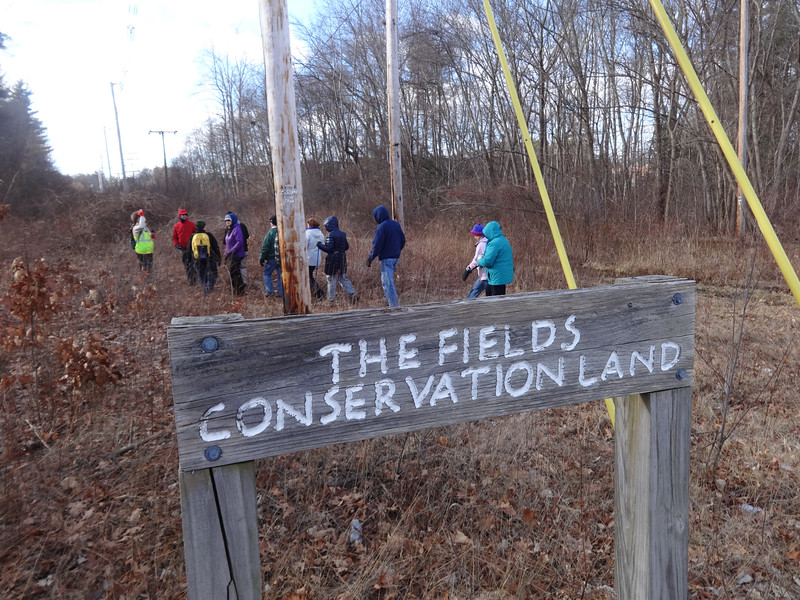 The Fields Conservation Land was one of the open spaces explored by Hike Beautiful BIllerica on Jan. 28. Photo by Mary Leach