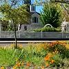Luther Burbank Home and Gardens, Santa Rosa, CA