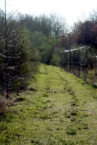WTR 2007-04-25 07