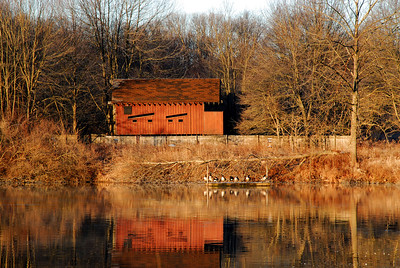 Branta Pond bird blind