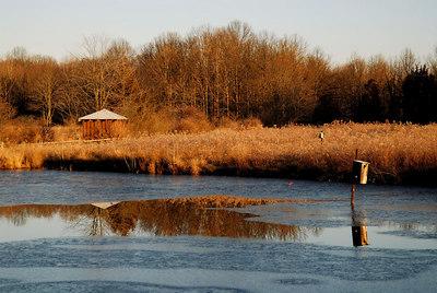 Esox Pond