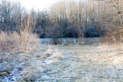 WTR 2008-01 16