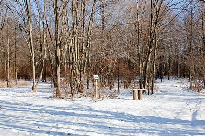Jan 2009 Walk 28
