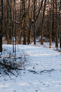 Jan 2009 Walk 18