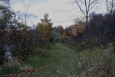 Oct 06 Walk 05