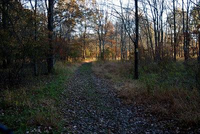 Oct 06 Walk 26