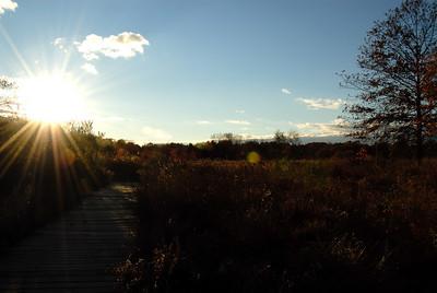 Oct 06 Walk 16