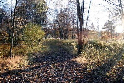 Oct 06 Walk 22