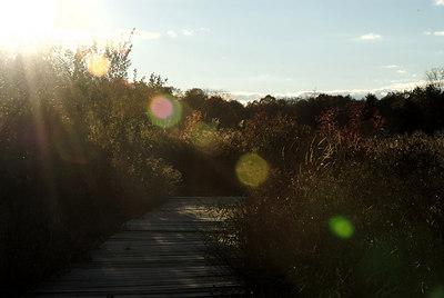 Oct 06 Walk 18