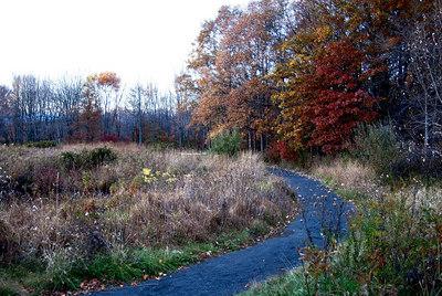 Oct 06 Walk 28